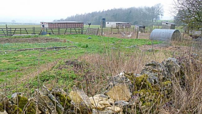 The lowdown on the smallholding planning process from Tony Biebuyck