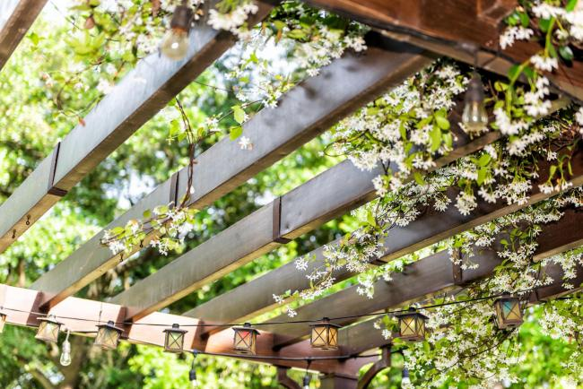 How To Keep Your Outdoor Space Private And Peaceful South West