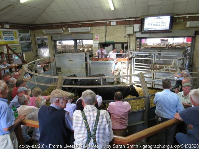 Livestock markets are playing a crucial role in helping to tackle mental health concerns