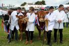 Thousands flock to celebrate rural life at Dorset County ShowDorset County Show, Grand Parade, 08/09/19, Picture: FINNBARR WEBSTER/F30710