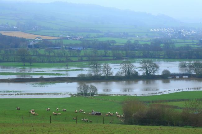 Axe Valley flooded by river Axe in East Devon