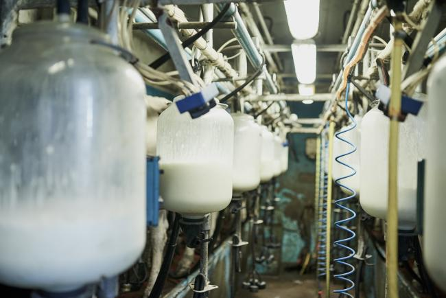 NFU urges MPs to investigate issues with liquid milk market