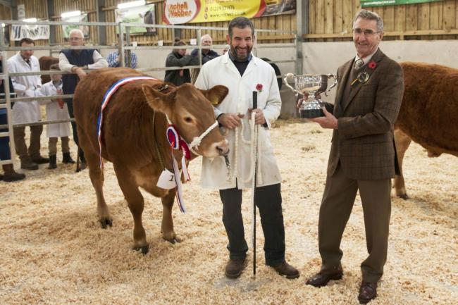 Mr Bunkum is presented with the trophy for best bullock in show at last year's event. Photo: Claire Hosken Photography