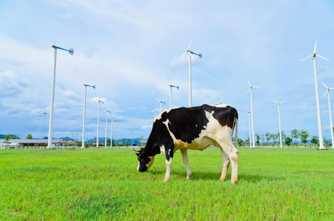 The company seeks to triple the speed of CO2e reductions on-farm over the next ten years
