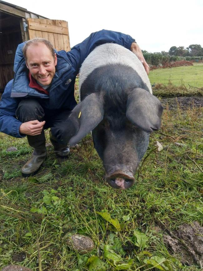 Graham Eggins with his pig Dina who has given birth to a litter of 13. Picture: Hillside Farm/SWNS