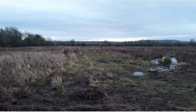 Land off the Wanborough Road earmarked for the northern half of the Foxbridge new village