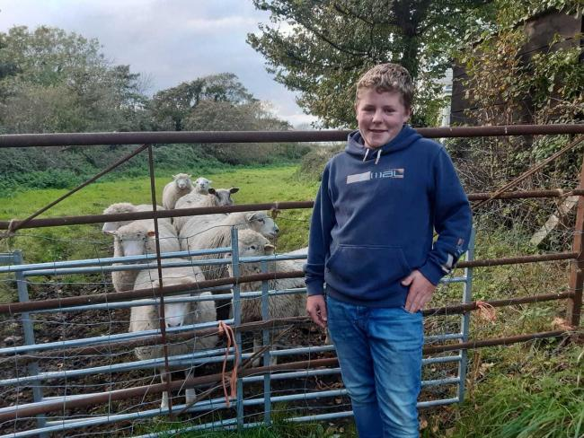 Inspirational young farmer Will Banham has raised his own sheep. Picture: Will's Lambs