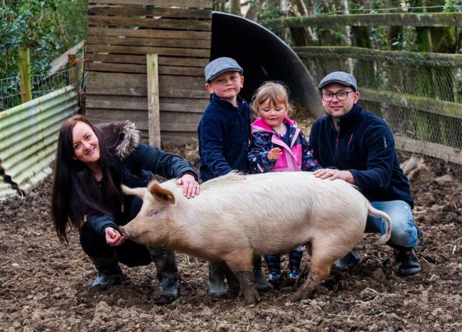 Sarah Allan and her husband Stuart with their children Archie and Phoebe, with their pet pig. Picture: SWNS