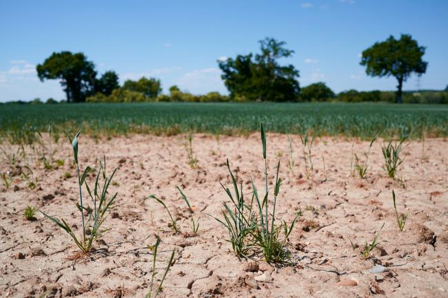 This month is among the driest Aprils on record