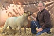 Photo attached:  Roussin Sheep expert, Michel Duguesne, who will be travelling from Normandy, France to judge the breed at the 2014 Royal Cornwall Show