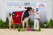 2014 Champion of Champions winner Peak Goldwyn Rhapsody shown by Yasmin Bradbury and Bill Nadin of Derbyshire