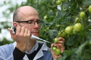 Professor Simon Avery from The University of Nottingham has developed a breakthrough anti-fungal technology
