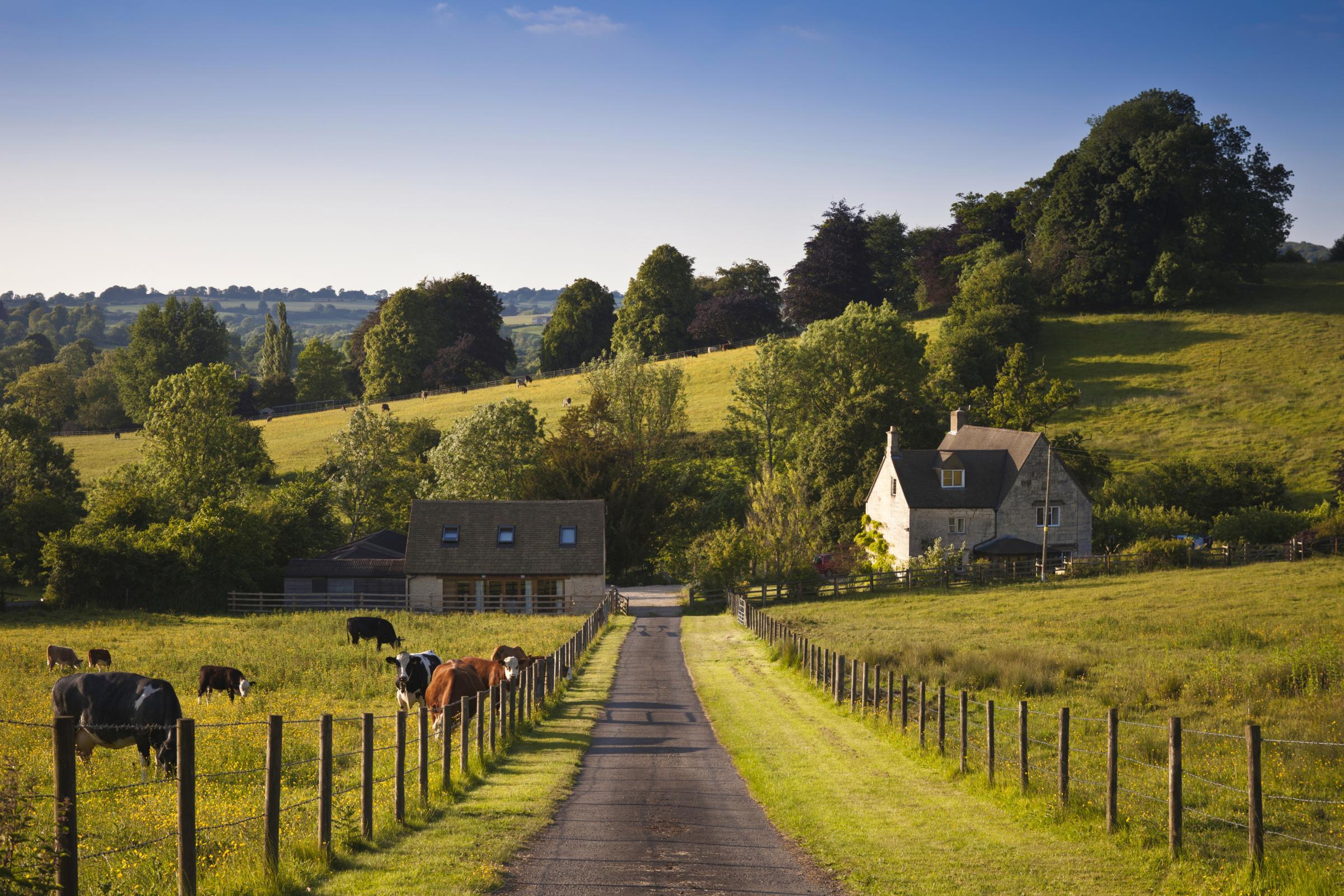 city and farm life