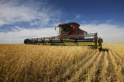 The total area for cereals and oilseeds area for harvest in 2015 is down two per cent