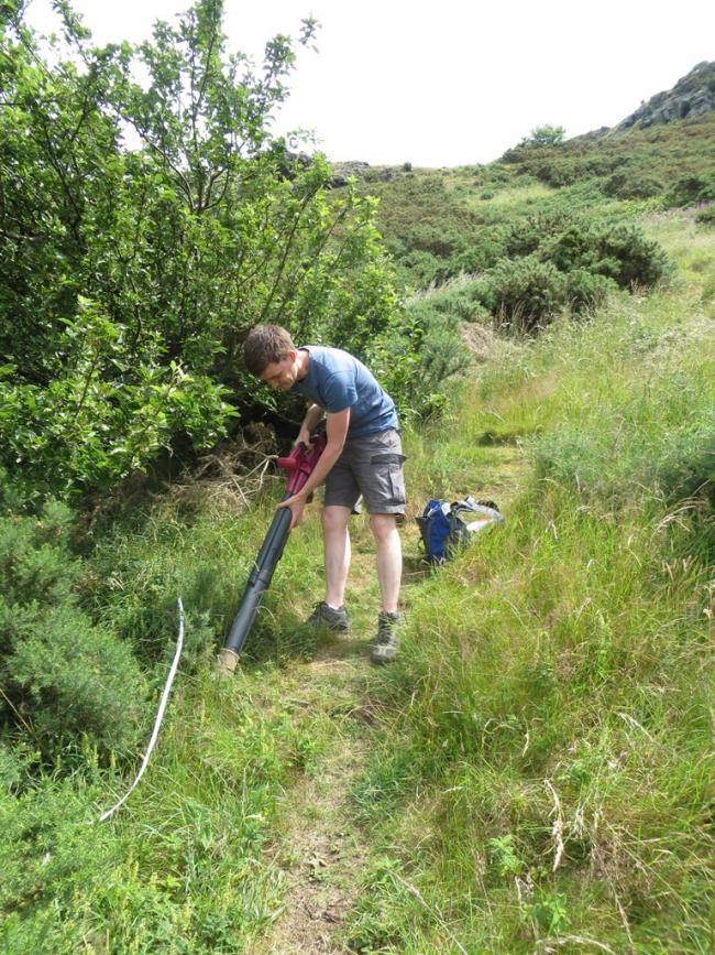 Mike Smith surveying for Brown bordered lacewing at Arthurs Seat. Pic: Suzanne Bairner