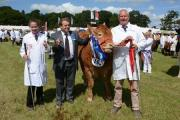 A new show organiser has been appointed for the Mid Devon Show