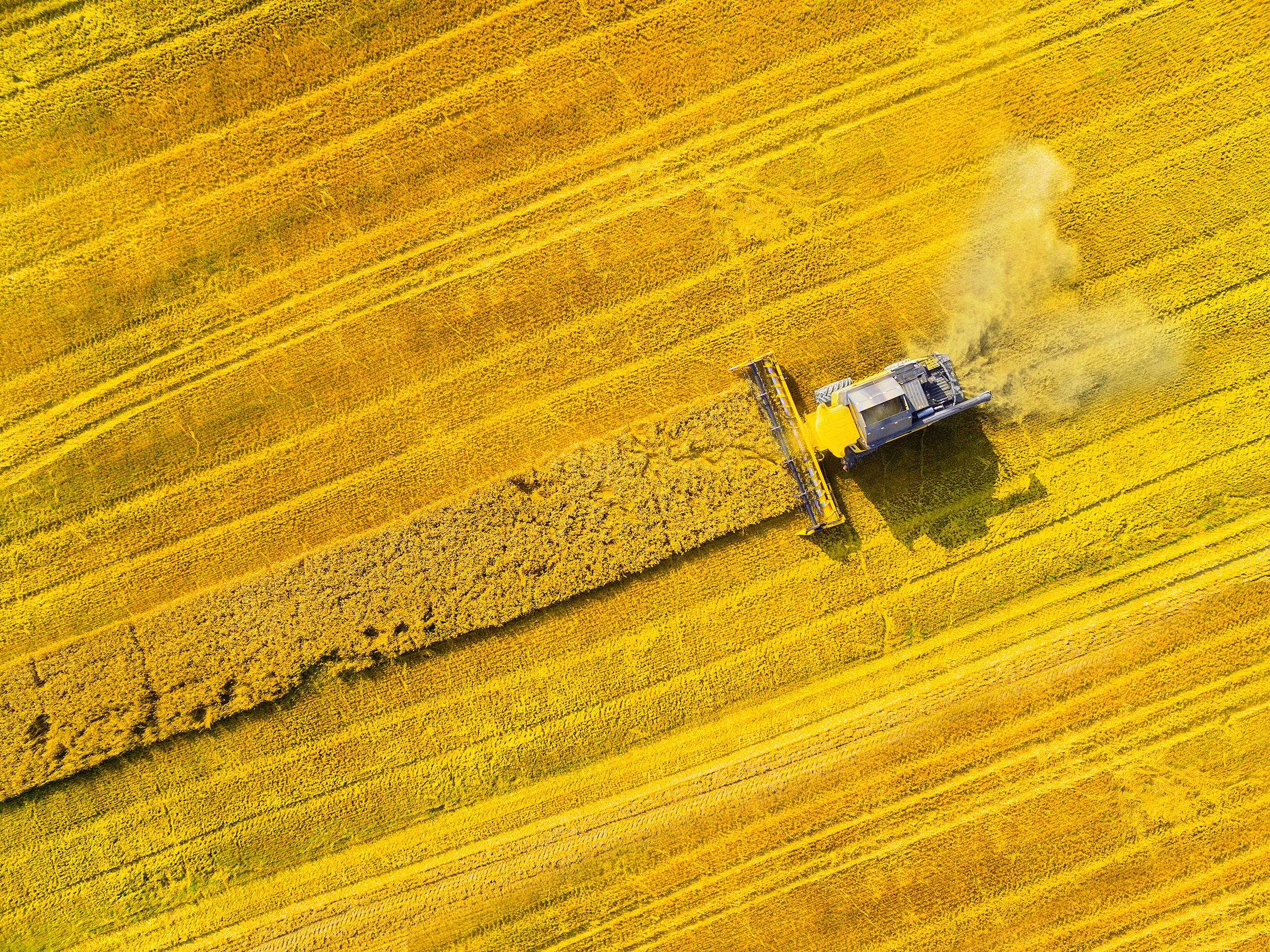 Arable farmers need help to become resilient to volatility following harvest