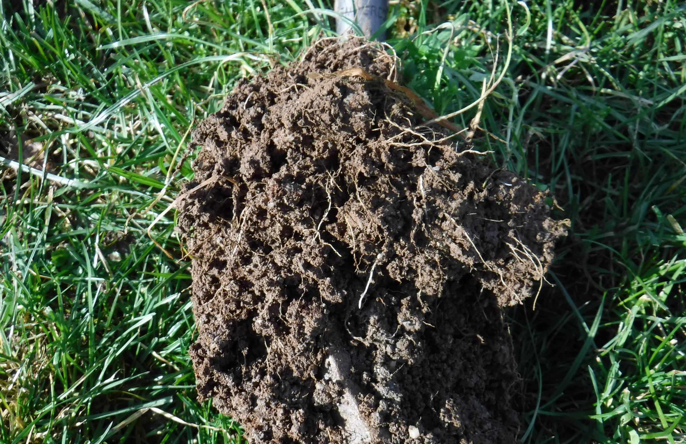 Phase 2 of collaborative On-Farm soil organic carbon project begins