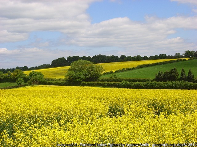The average value of agricultural land in England and Wales remained virtually unchanged in the first three months of 2019