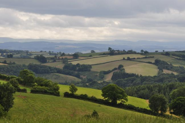 Deadline to request Countryside Stewardship application pack imminent